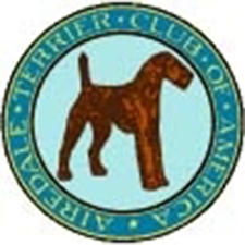 airedale terrier club of america - 900×905